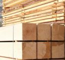 US lumber prices on a downward trend this month