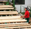 UPM to boost sawn timber capacity at Korkeakoski sawmill in Finland