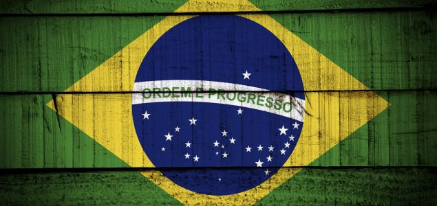 Brazilian wood-based products on the rise in September