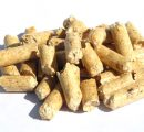 Wood pellets demand in co-firing to increase in the next decade