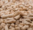 Japan's wood pellets imports up by almost 50%