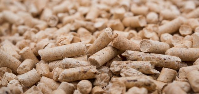 Steady growth in EU wood pellet production and consumption