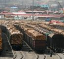 China increased log imports by almost 10% during 2016