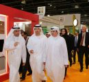 UAE examines potential of building wooden houses