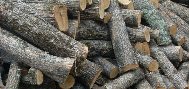 https://www.globalwoodmarketsinfo.com/wp-content/uploads/2017/03/Firewood-1m-Oak-logs-635x300.jpg