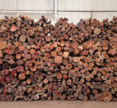 Chinese logs and sawnwood prices in main timber markets