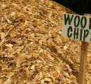 Chilean wood chip exports were down 40% in 2020