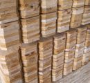 New record for South China's imports of wood and wood products from the US