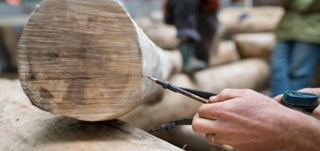 Roundwood prices in Estonia on downward path in February