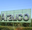 Arauco's sales down by almost 20% in Q1/2020