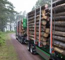 Södra raises sawlogs prices as Swedish sawn timber market improves