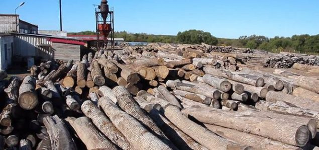 Analysis of the production characteristics of the Russian log market
