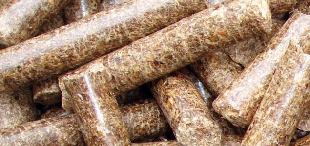 Belarus plans to organize 3 wood pellet joint ventures with companies in the EU