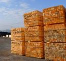 The construction sector boom seems to help the rebound of the French softwood lumber market