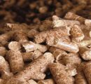 Prices for Austrian wood pellets well above last year's level
