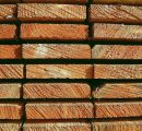 Strong lumber markets in the US and Europe increased the global sawlog price by 10%