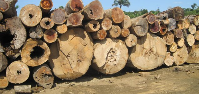 The production of Brazilian hardwood products has decreased by nearly 70% in the past 10 years