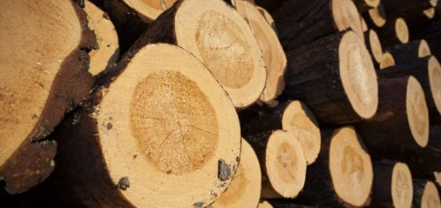 Finland's forest industries used 67.4 million cubic metres of roundwood in 2016