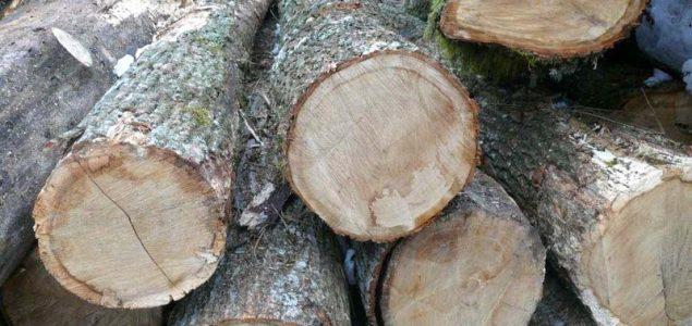 European oak market under intense pressure