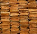 Global softwood markets prices went upward in Q1/2017