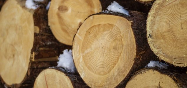 Timber companies in Latvia report 7-8% higher turnover in H1/2017