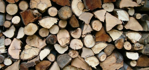 Wood fiber costs for hardwood pulp manufacturers in Sweden are among the lowest in Europe