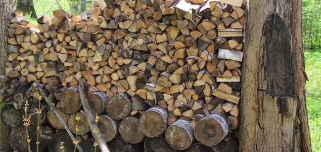 Roundwood prices in Estonia on a downward trend