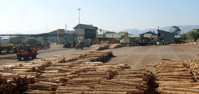 Angelina Forest Products plans to build $100 million sawmill in 2019