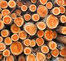 Vietnam's timber product exports might hit $8 billion in 2017