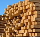 Global sawlog prices on a downward trend; lumber trade rising