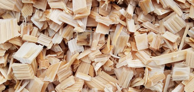 Chinese hardwood chips imports to hit new record