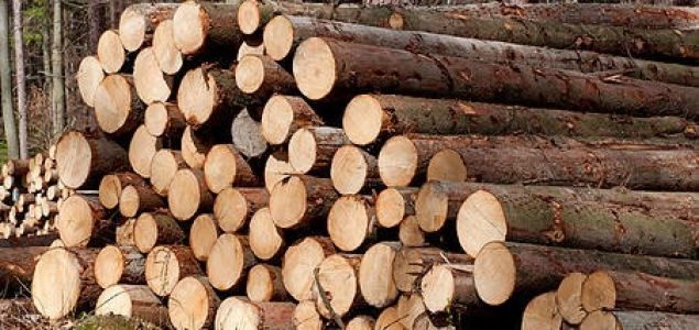 Austria: Massive price drops for logs due to bark beetle infestation and coronavirus crisis