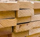 US softwood lumber price lost ground
