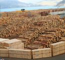 Russia exports less logs and more lumber