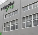 Segezha Group to start construction of two plywood plants in Russia this year