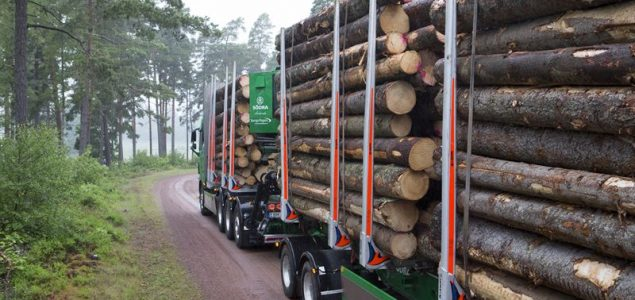 Sweden's Sodra to extend production stoppages at its sawmills due to spruce bark beetle infestation