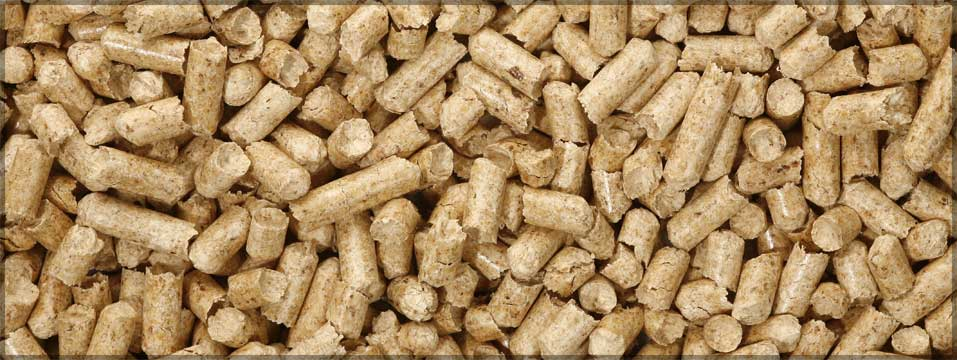 Burning Wood Biomass Pellets ~ The demand for japanese biomass is forecast to triple by