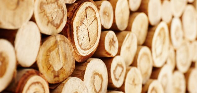 Roundwood prices in Lithuania increased during October