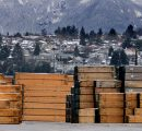 Weather conditions weaken the US lumber market