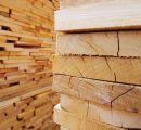 Bright market prospects for the European softwood lumber in Egypt