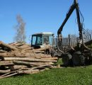 Weather brightens in Latvia; logging returns to normal