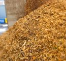 Large Japanese companies turn to wood pellets to clean-up coal power