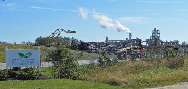 Enviva signs 10-year contract to supply wood pellets to Japanese plant