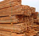 Timber exports from Malaysia will increase by 5% in 2018