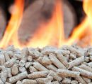 Swiss wood pellet prices increase in November