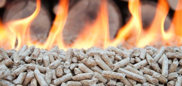 Wood pellet co-firing to resume in the Netherlands; imports expected to rise sharply