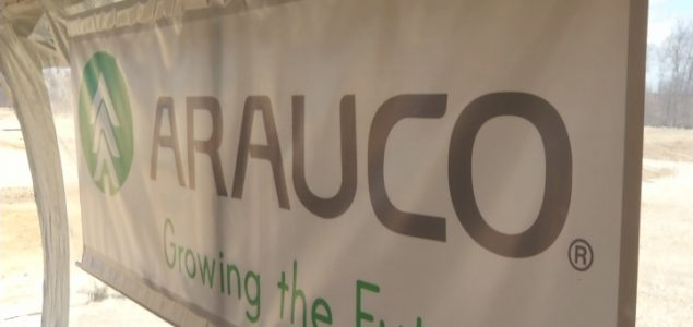 Challenging 2019 for Arauco