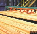 Rex Lumber set to break ground at new sawmill in Troy, Alabama