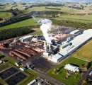 Daiken cleared to buy MDF plant in New Zealand