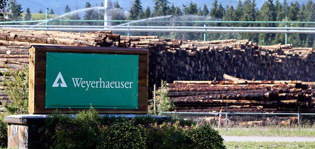 Weyerhaeuser reaches $269 million net sales in Q1/2018